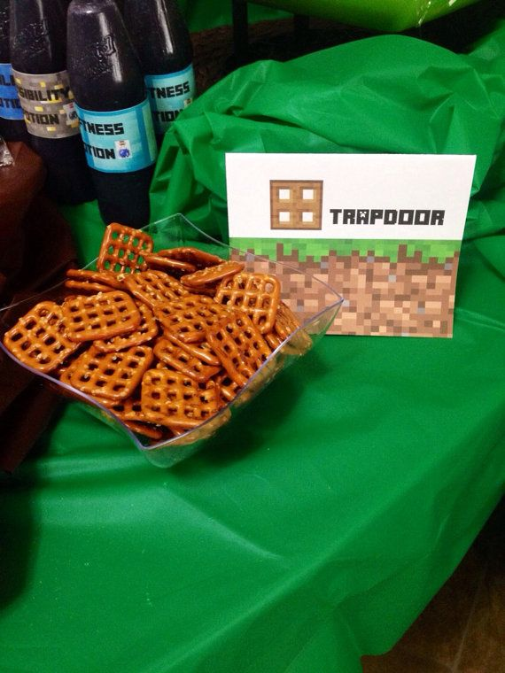 Everything You Need To Throw The Most Awesome Minecraft